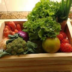 Logo Organic Box