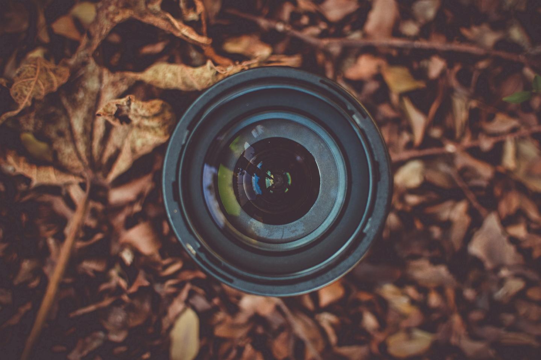 3 formas de aproveitar o Dia Mundial da Fotografia em Curitiba