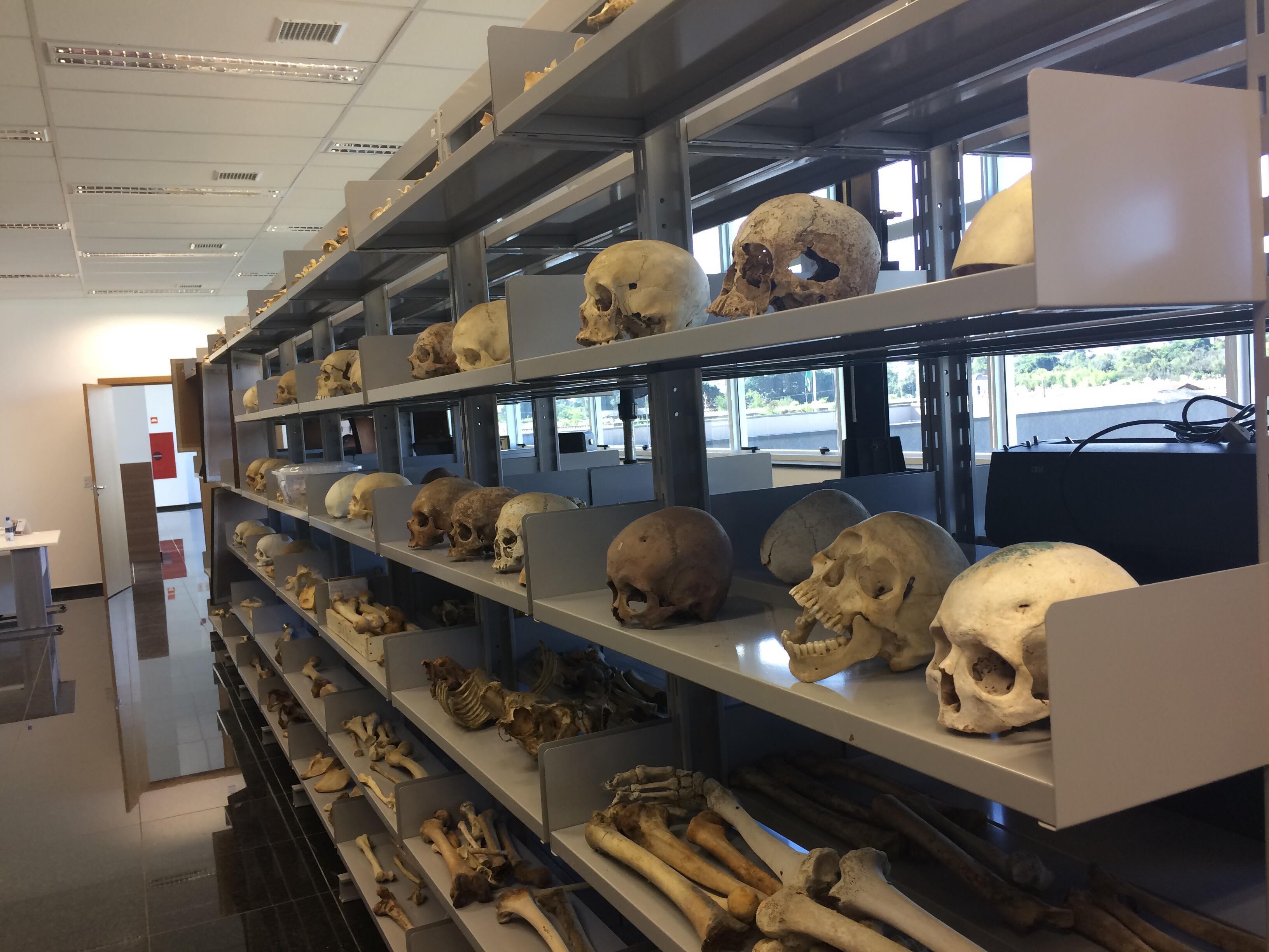 Museu do IML esconde histórias do crime no Paraná
