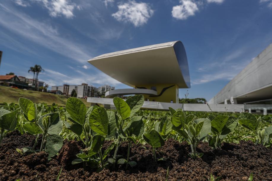 Em obras da Bienal você pode fazer uma pipa ou tirar foto em campo de soja