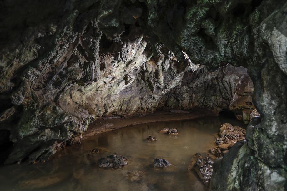 Terceira maior caverna do Paraná está a 30 km de Curitiba