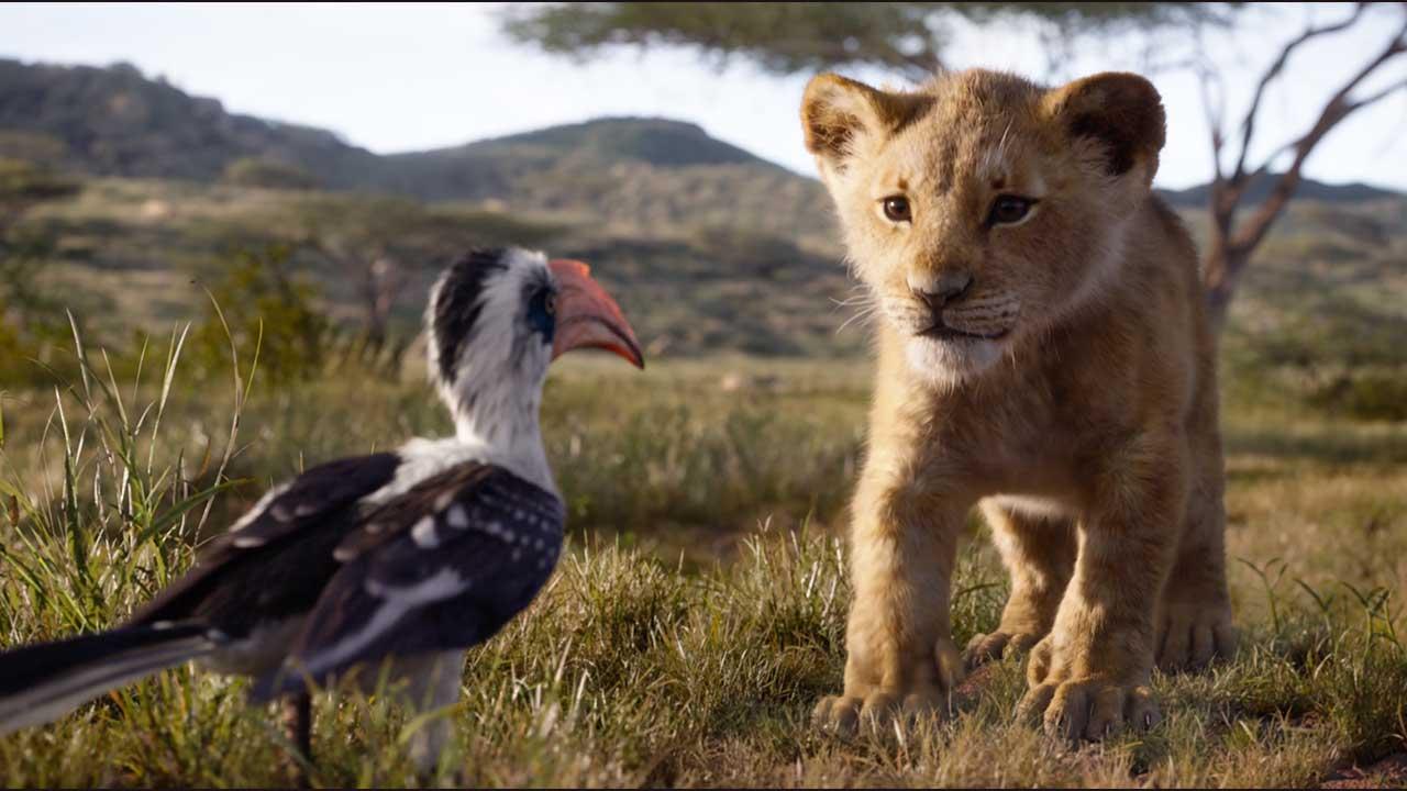 """Você pode assistir """"O Rei Leão"""" com 50% de desconto – confira curiosidades do filme"""