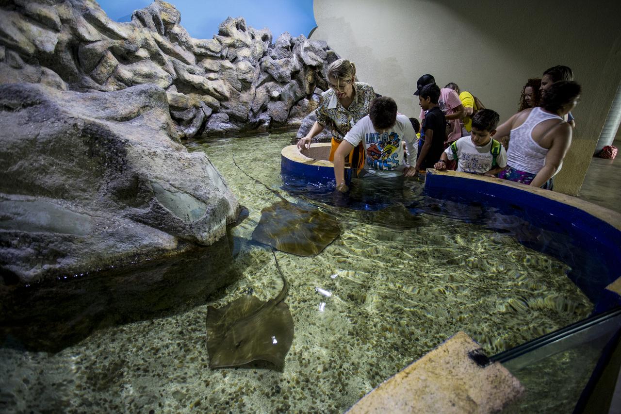 Conheça os tanques sensoriais do Aquário de Paranaguá
