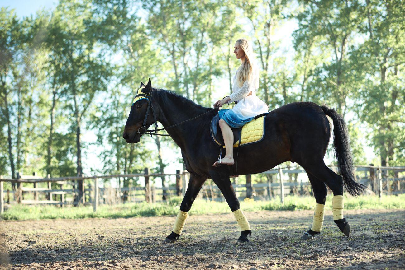 6 lugares para andar a cavalo em Curitiba e região