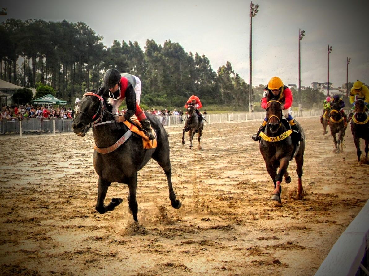 Com novo shopping, Jockey muda corridas para domingos e faz festa de estreia neste fim de semana