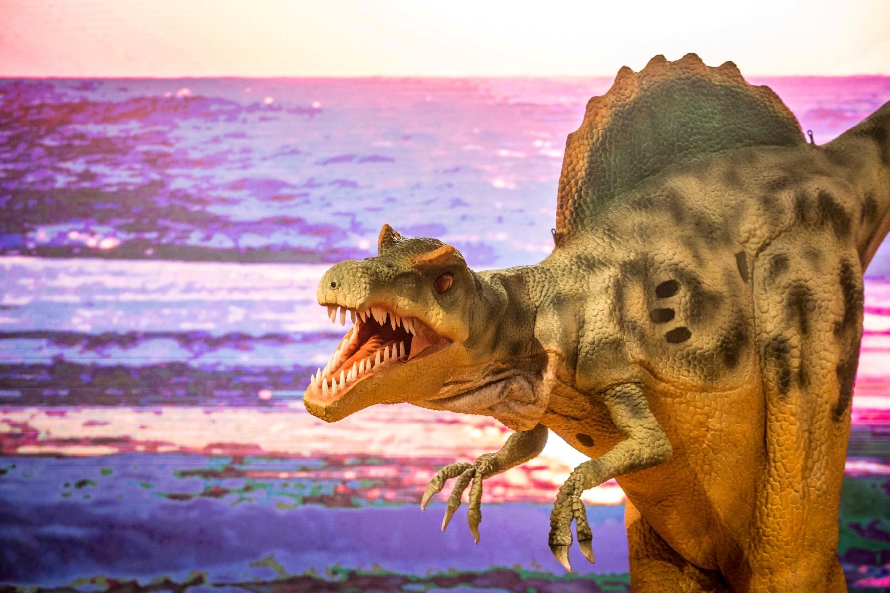 Feriadão tem espetáculo com dinossauros, feira de gatos e muito mais
