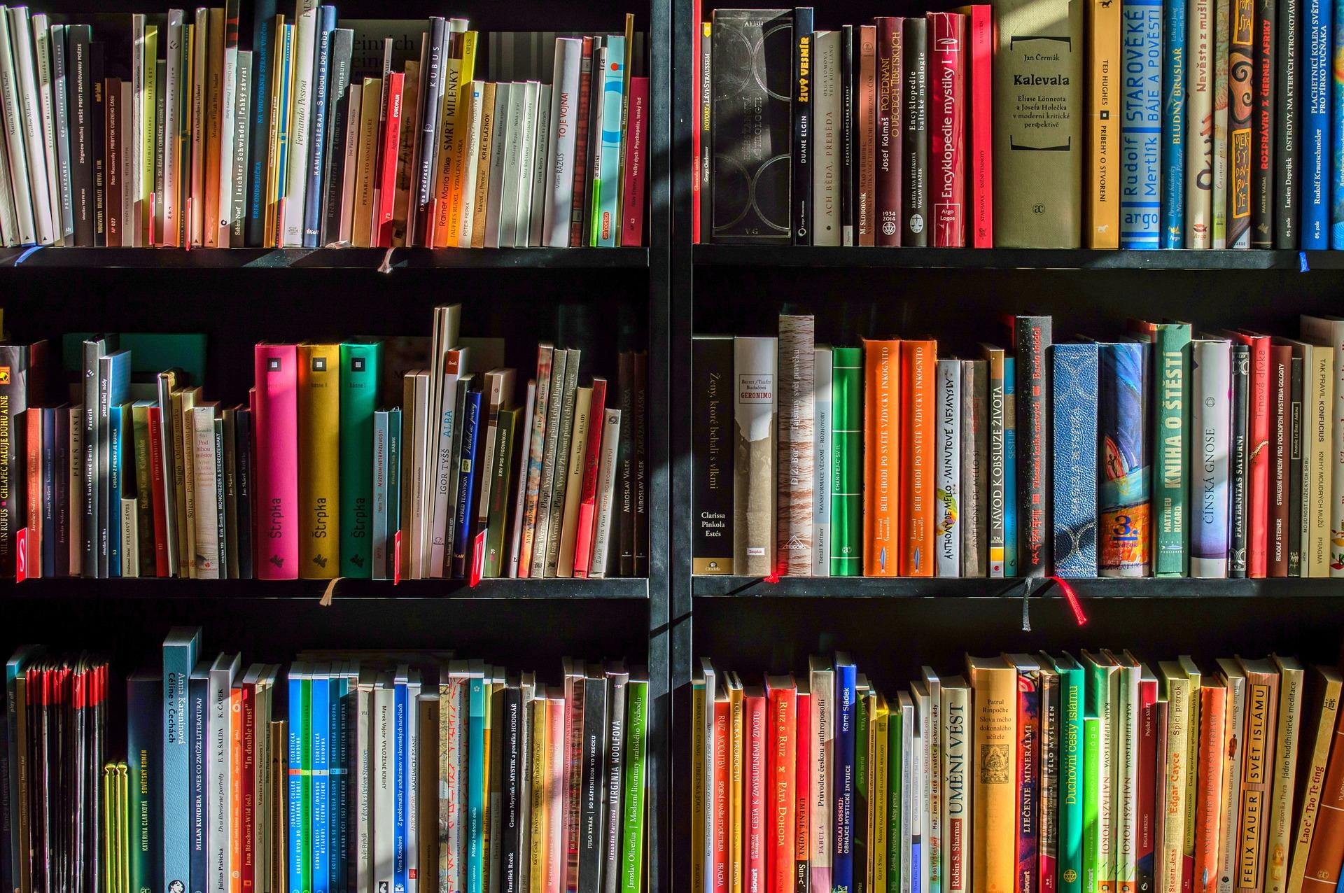 Clubes de leitura para participar em Curitiba