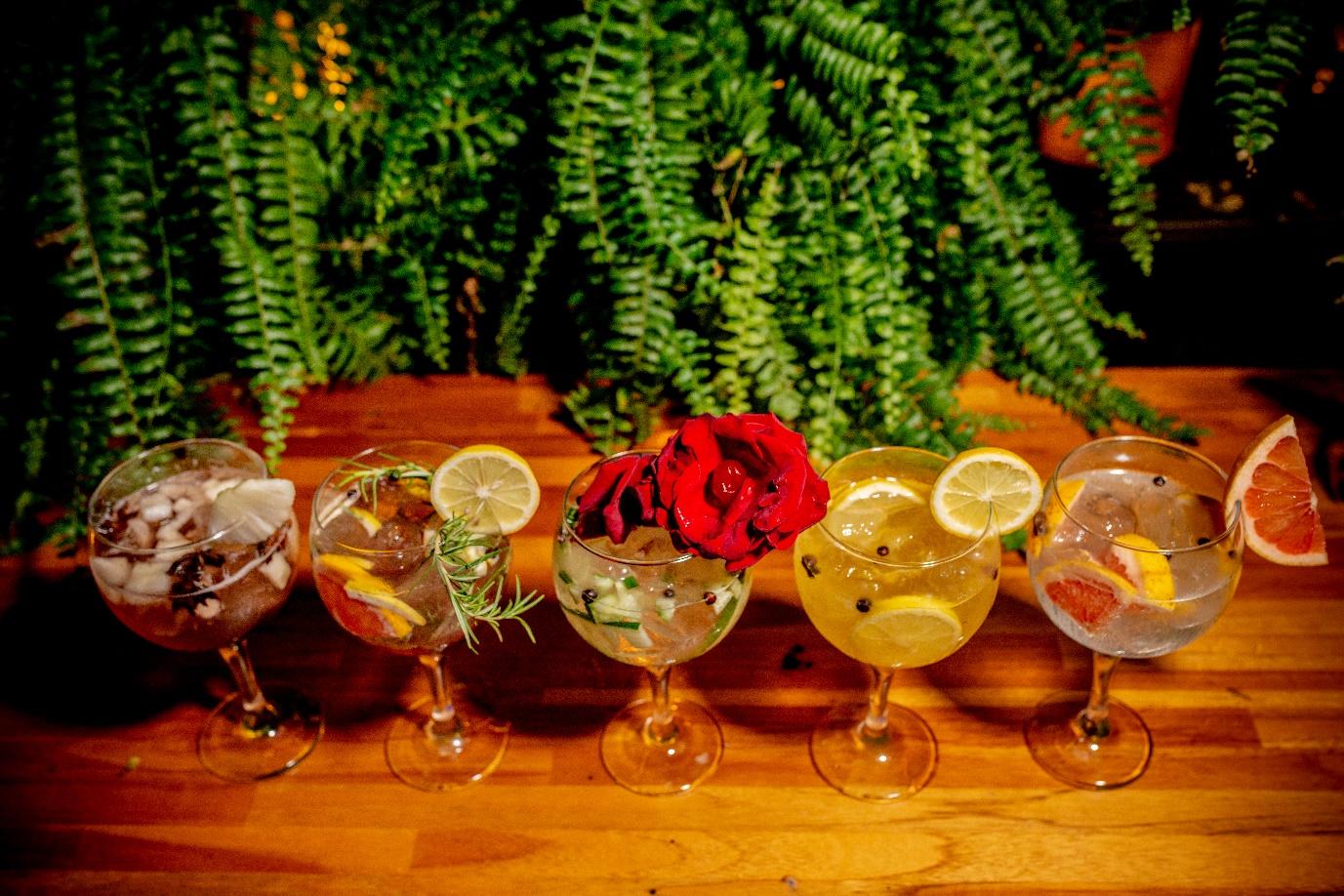 6 lugares para beber gin tônica com desconto do Clube