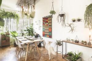 Como deixar sua casa com cara de Urban Jungle